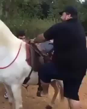 Ciccione che monta a cavallo